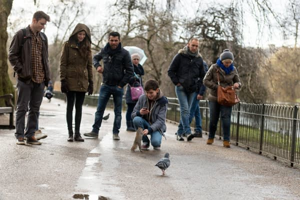 PhotoTrip - London