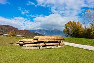 Egy gyanútlan farakás Bled környékén, amiből fotózási helyszín lett