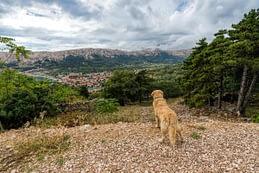 Baska, Croatia - a városka látványa a Kastel Baska-tól, és persze Döme