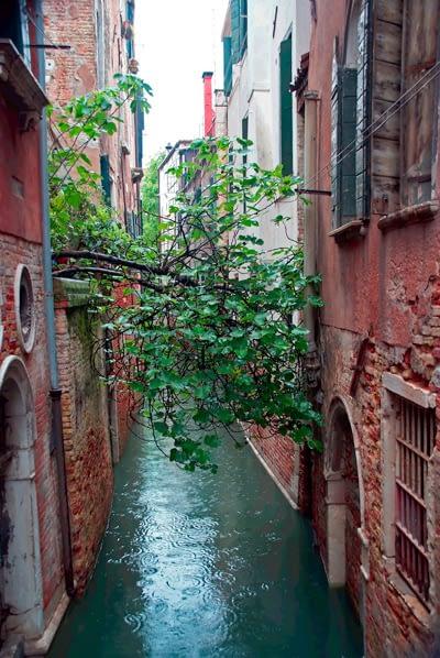PhotoTrip - Venezia