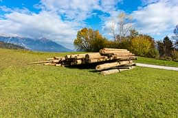 Október 31, zöld fű és szikrázóan kék ég. Ez is Bled